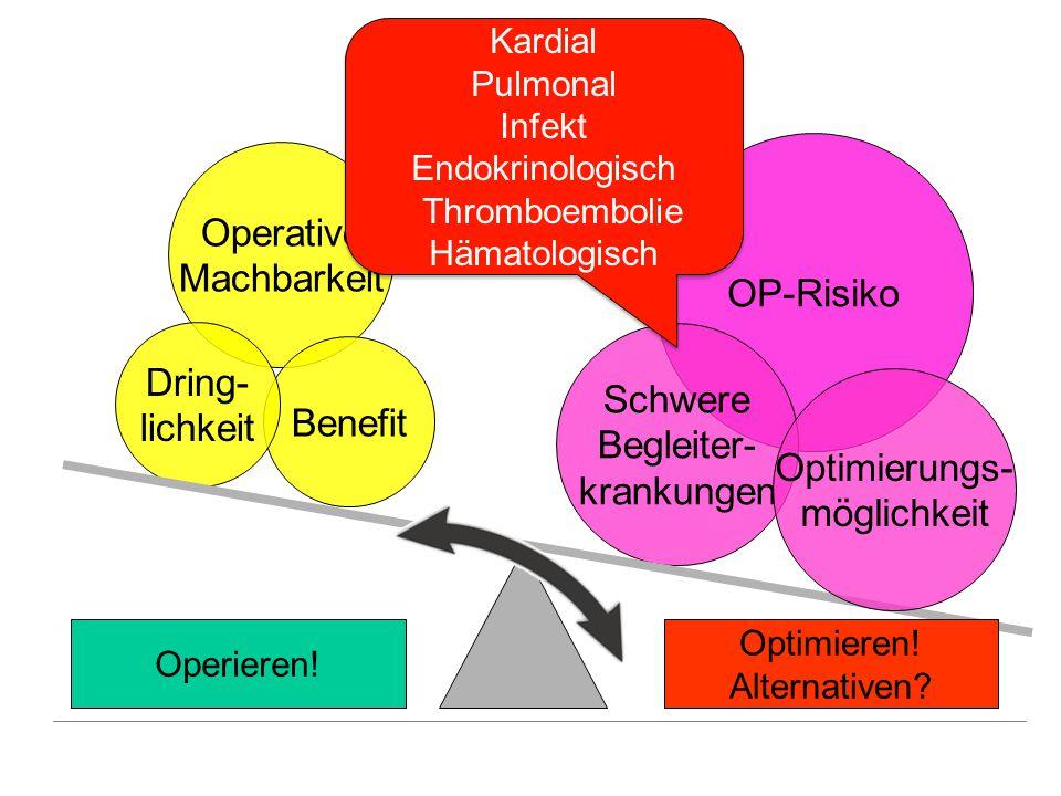 Operative Machbarkeit