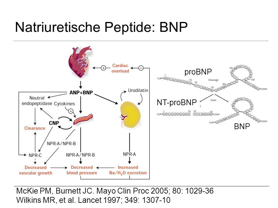 Natriuretische Peptide: BNP