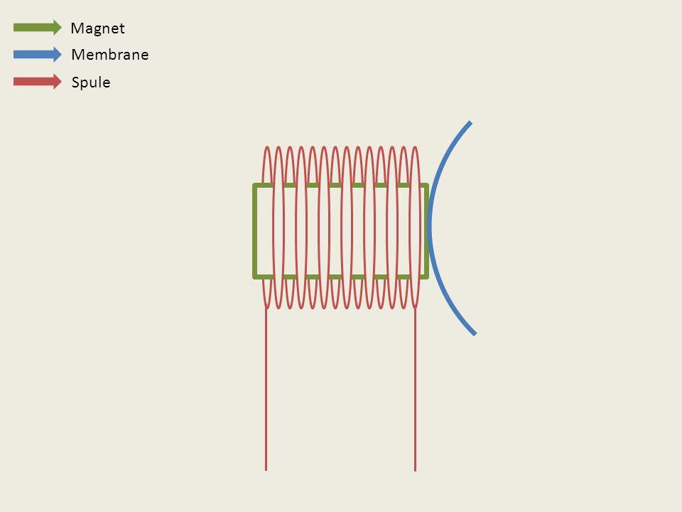 Magnet Membrane Spule