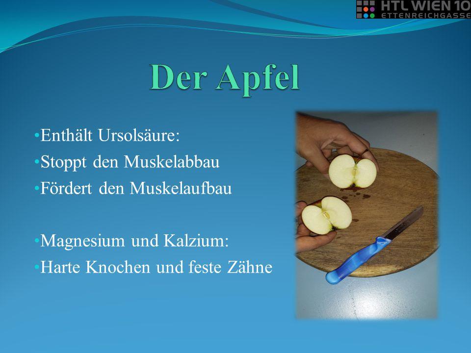 Der Apfel Enthält Ursolsäure: Stoppt den Muskelabbau
