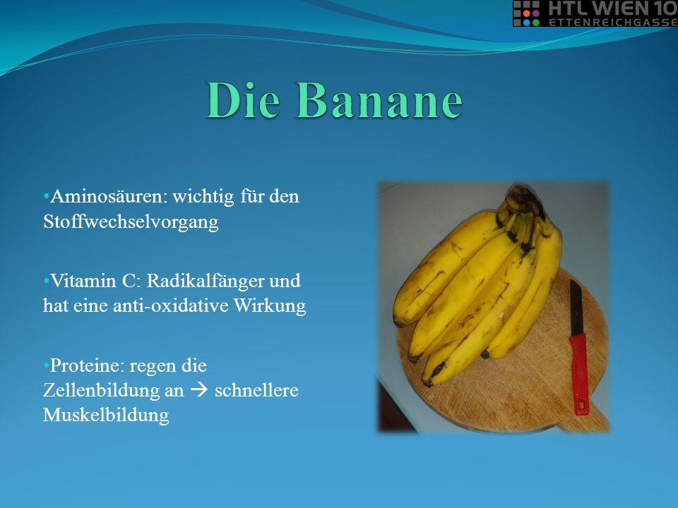 Die Banane Aminosäuren: wichtig für den Stoffwechselvorgang