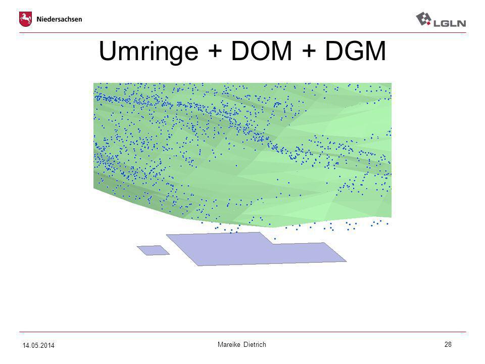 Umringe + DOM + DGM 14.05.2014 Mareike Dietrich