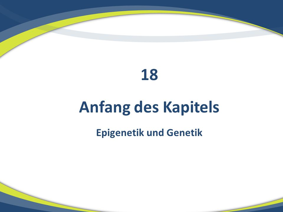 Epigenetik und Genetik