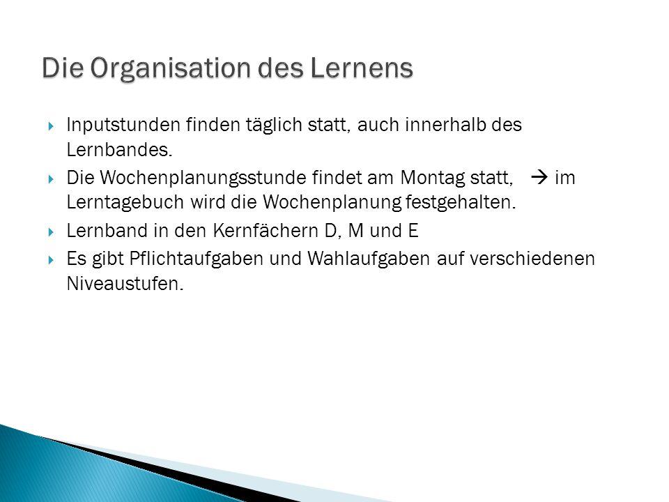 Die Organisation des Lernens
