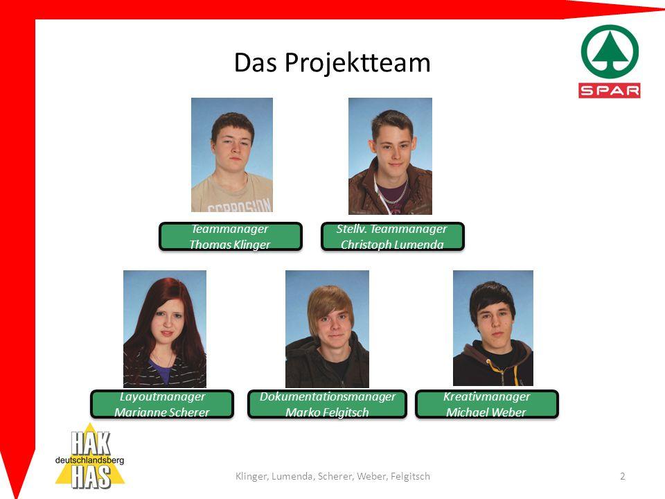 Das Projektteam Teammanager Thomas Klinger Stellv. Teammanager