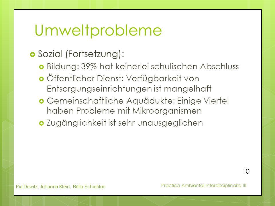 Umweltprobleme Sozial (Fortsetzung):