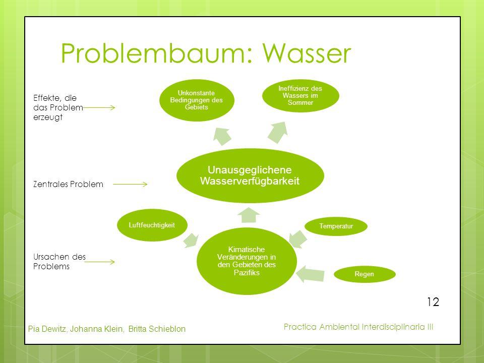 Problembaum: Wasser Unausgeglichene Wasserverfügbarkeit