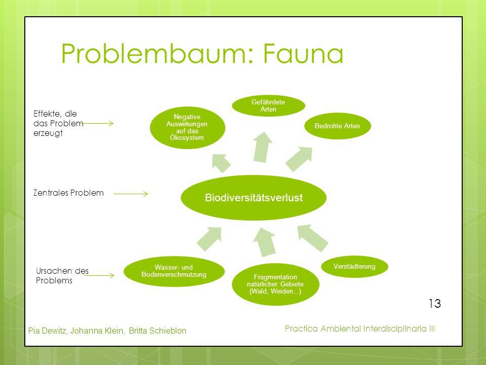 Problembaum: Fauna Biodiversitätsverlust
