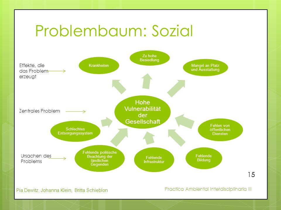 Problembaum: Sozial Hohe Vulnerabilität der Gesellschaft
