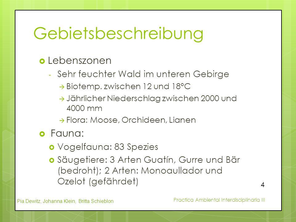 Gebietsbeschreibung Lebenszonen Fauna: