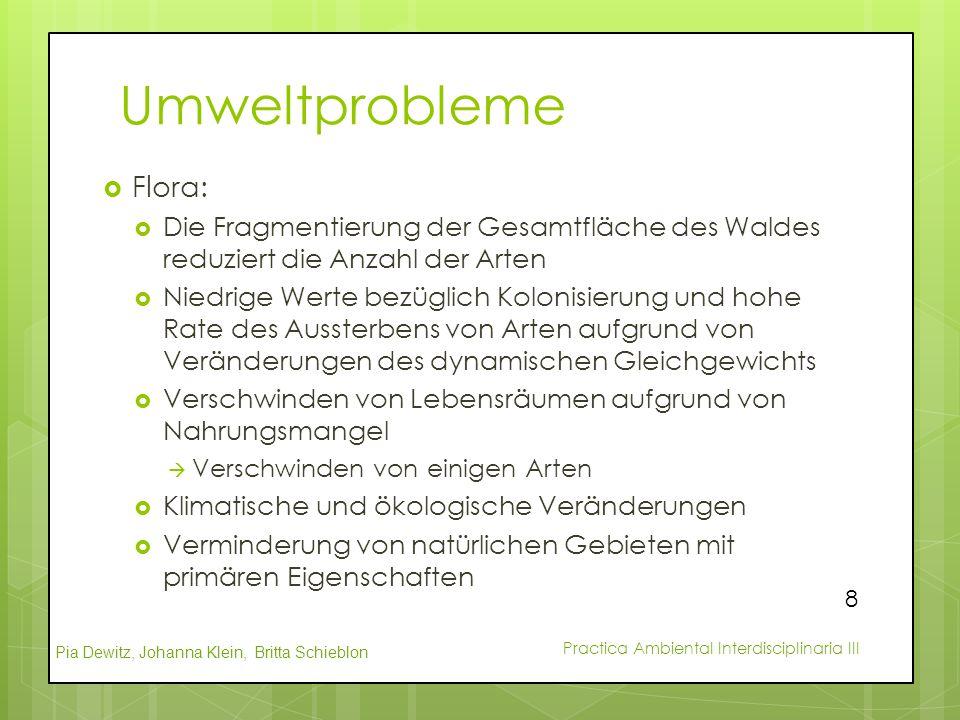 Umweltprobleme Flora: