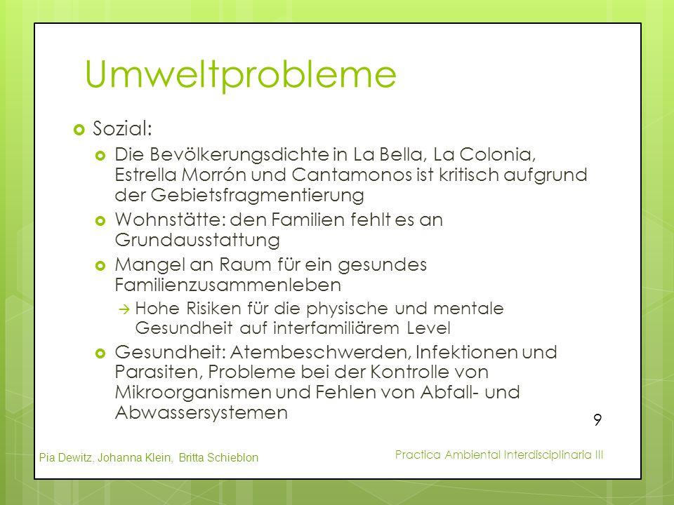 Umweltprobleme Sozial: