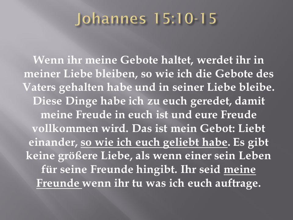Johannes 15:10-15
