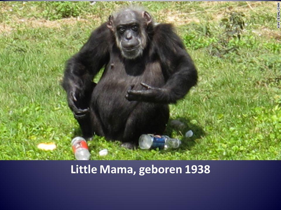 Little Mama, geboren 1938