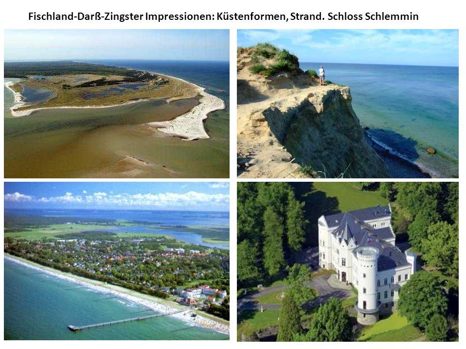 Fischland-Darß-Zingster Impressionen: Küstenformen, Strand