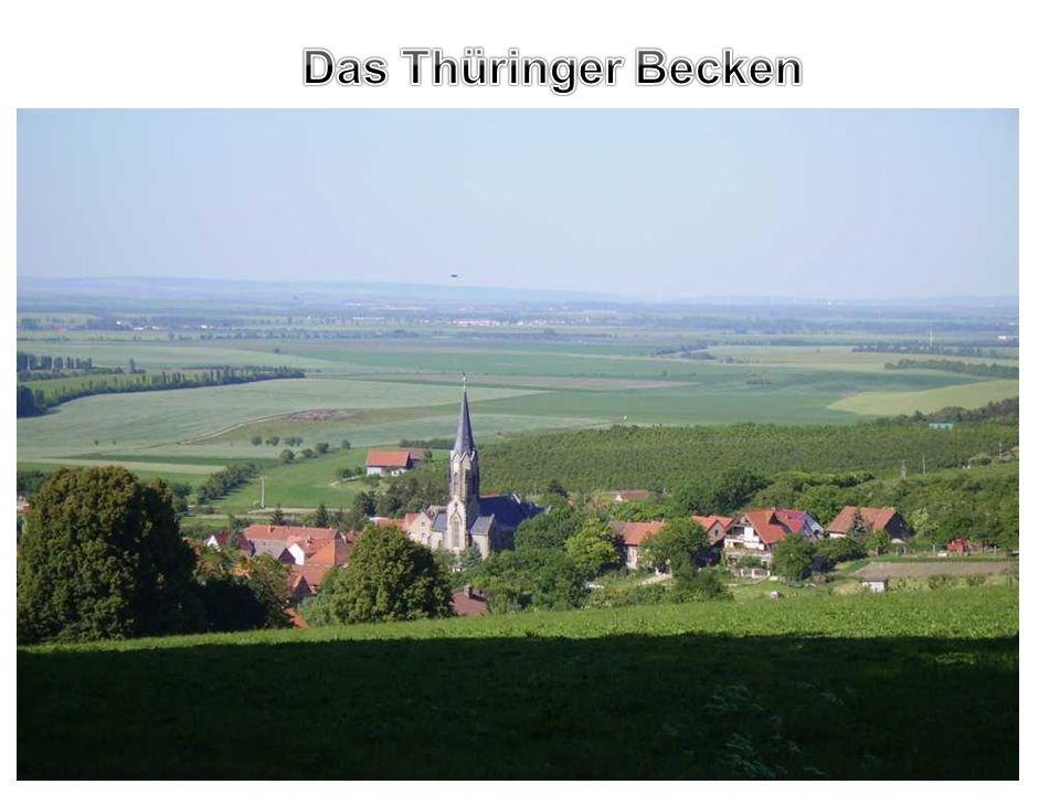 Das Thüringer Becken