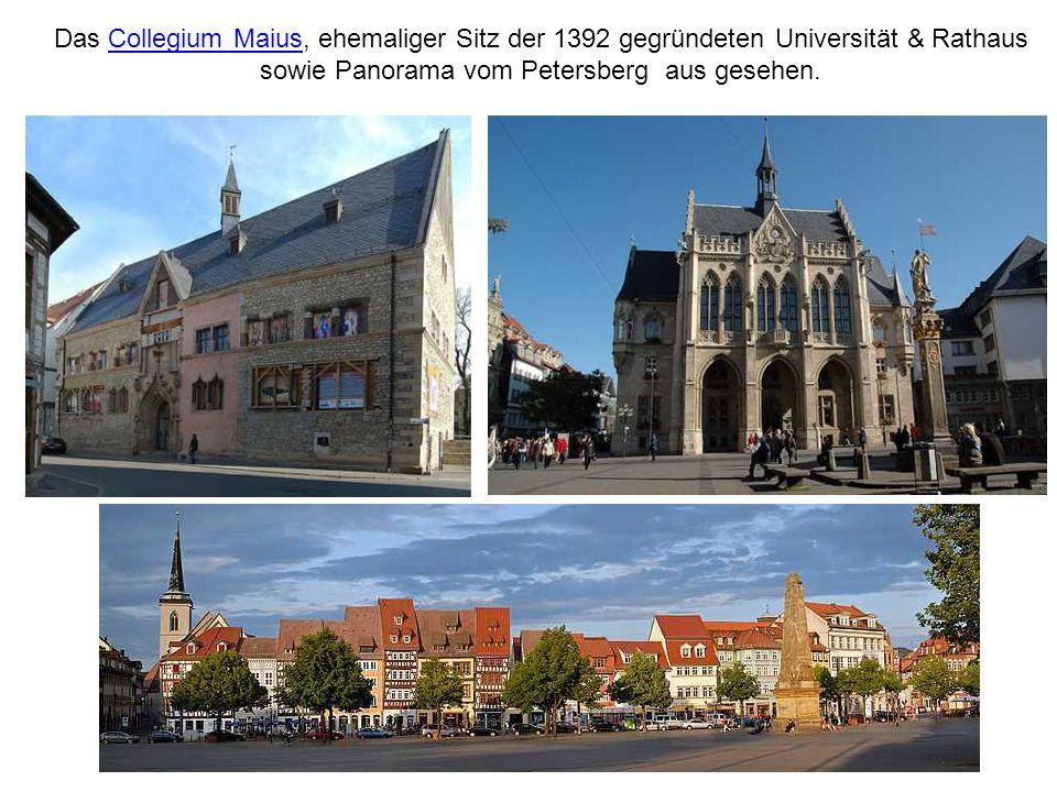 Das Collegium Maius, ehemaliger Sitz der 1392 gegründeten Universität & Rathaus sowie Panorama vom Petersberg aus gesehen.