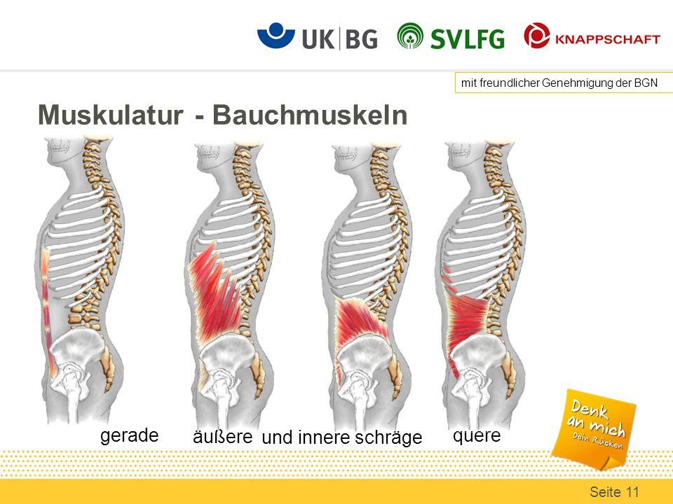 Beste Anatomie Bauch Muskeln Zeitgenössisch - Menschliche Anatomie ...