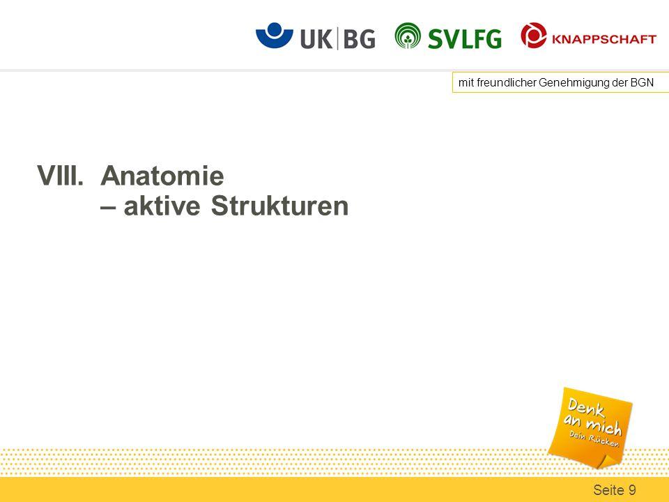 VIII. Anatomie – aktive Strukturen