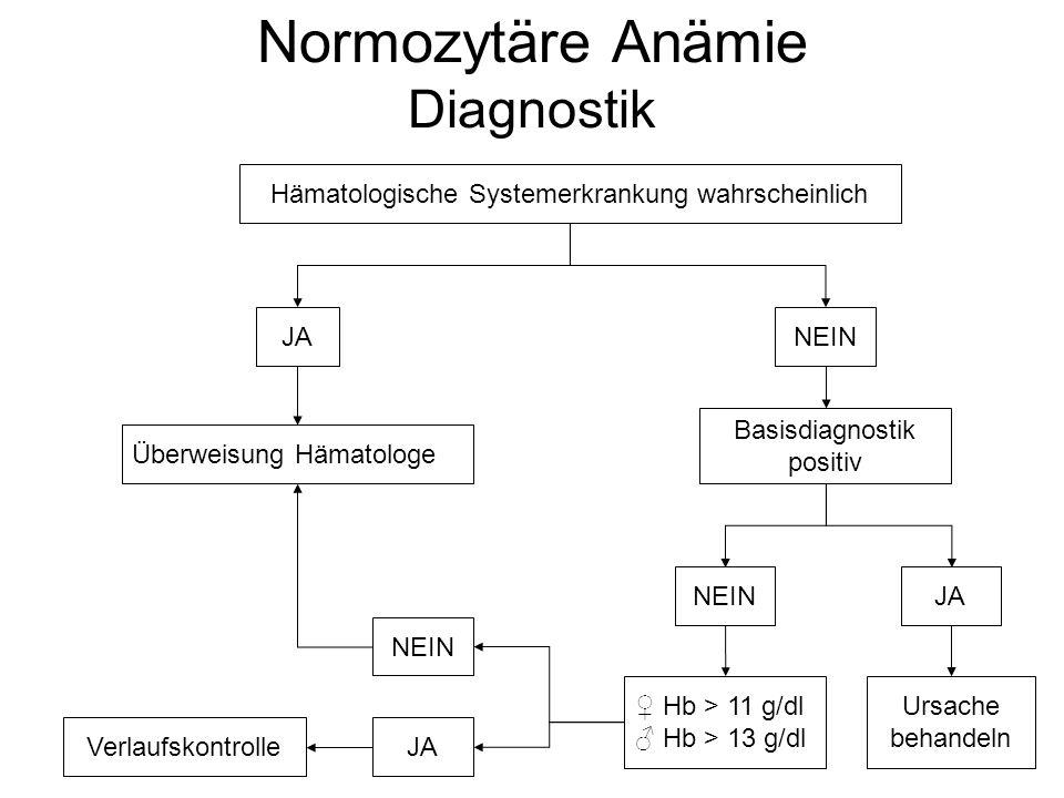 Normozytäre Anämie Diagnostik