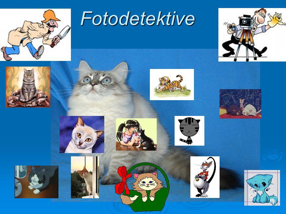 Fotodetektive
