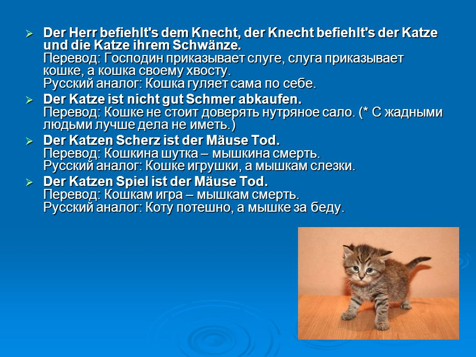 Der Herr befiehlt s dem Knecht, der Knecht befiehlt s der Katze und die Katze ihrem Schwänze. Перевод: Господин приказывает слуге, слуга приказывает кошке, а кошка своему хвосту. Русский аналог: Кошка гуляет сама по себе.