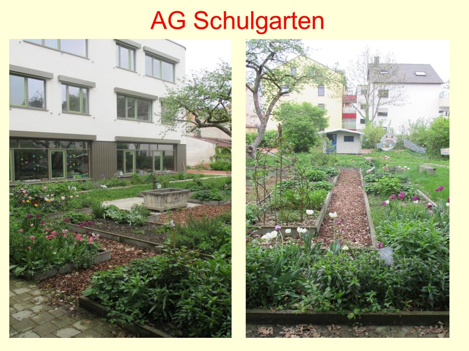 AG Schulgarten