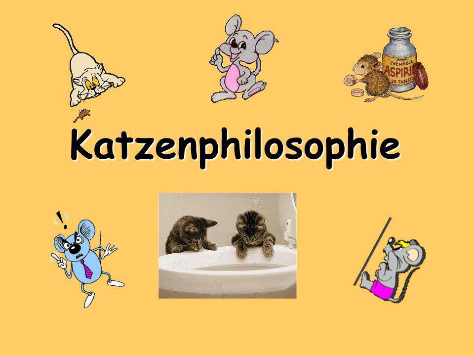Katzenphilosophie