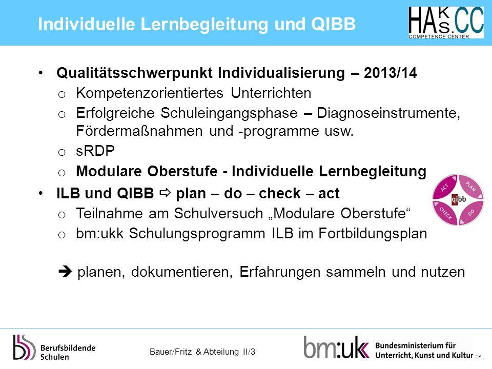 Individuelle Lernbegleitung und QIBB