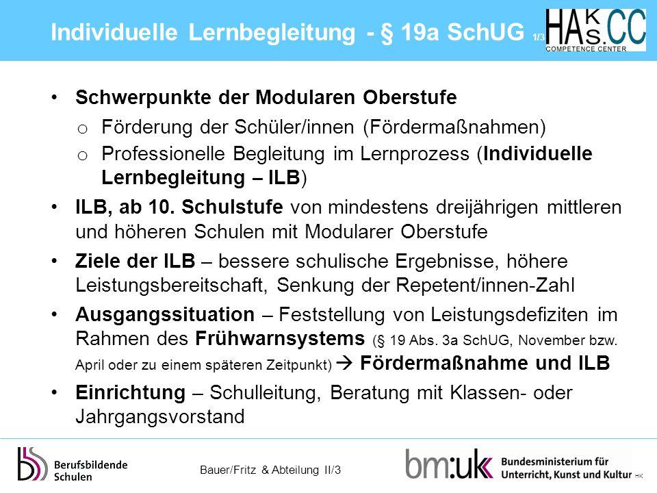 Individuelle Lernbegleitung - § 19a SchUG 1/3