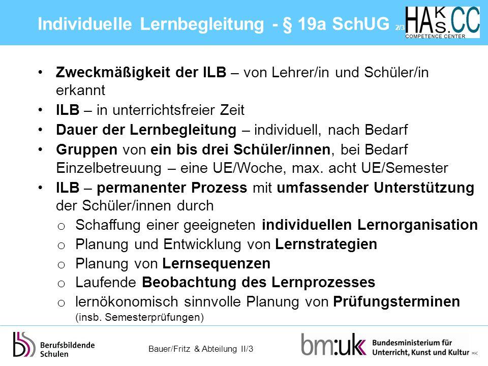 Individuelle Lernbegleitung - § 19a SchUG 2/3