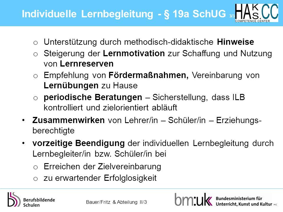 Individuelle Lernbegleitung - § 19a SchUG 3/3