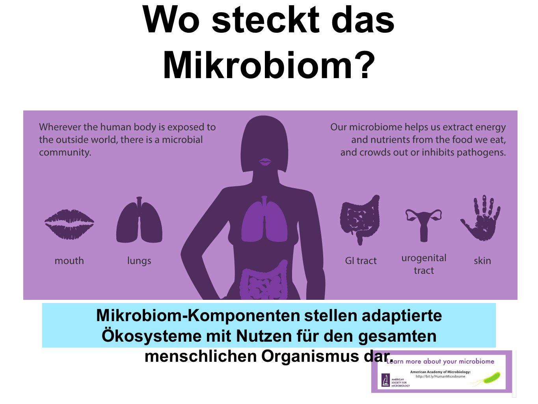 Wo steckt das Mikrobiom