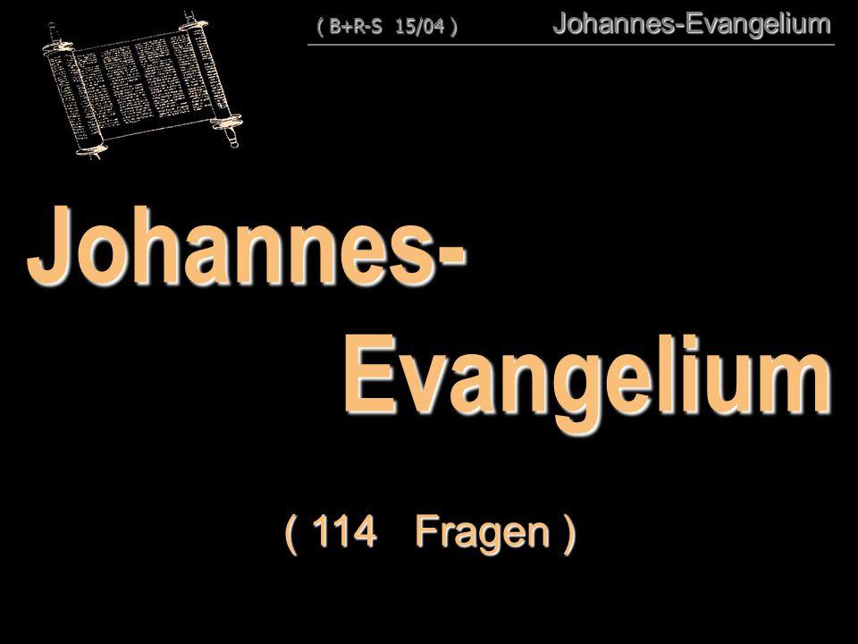 Johannes- Evangelium ( 114 Fragen )