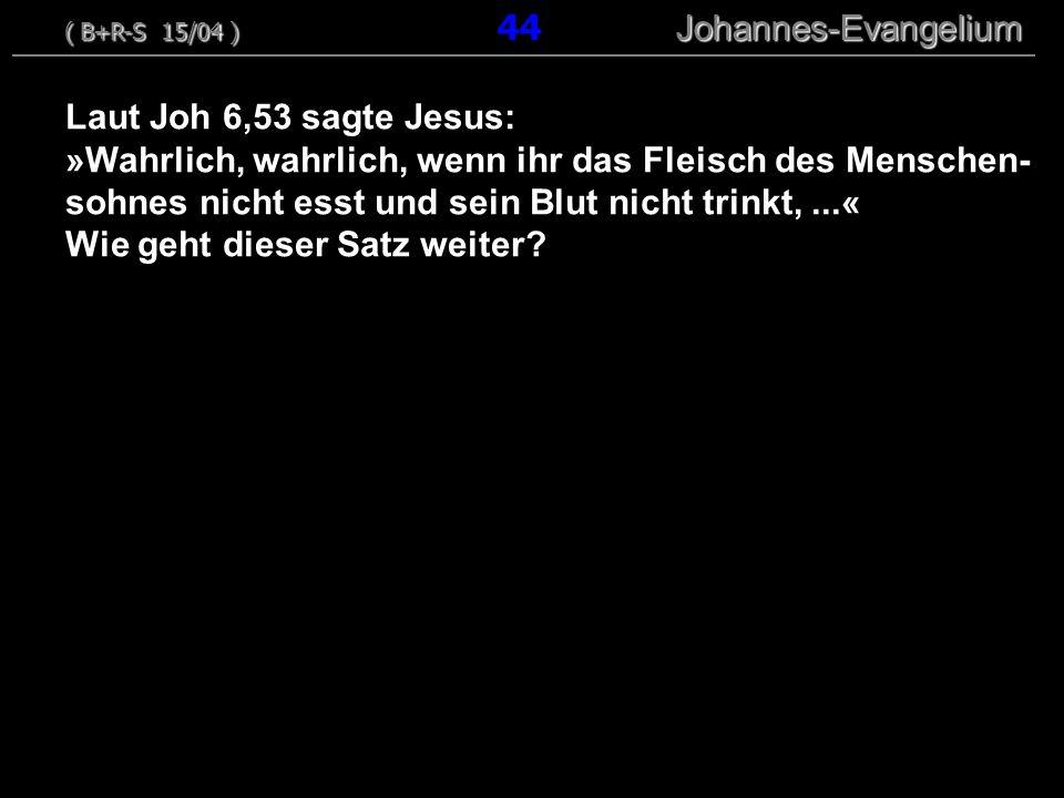 ( B+R-S 15/04 ) 44 Johannes-Evangelium