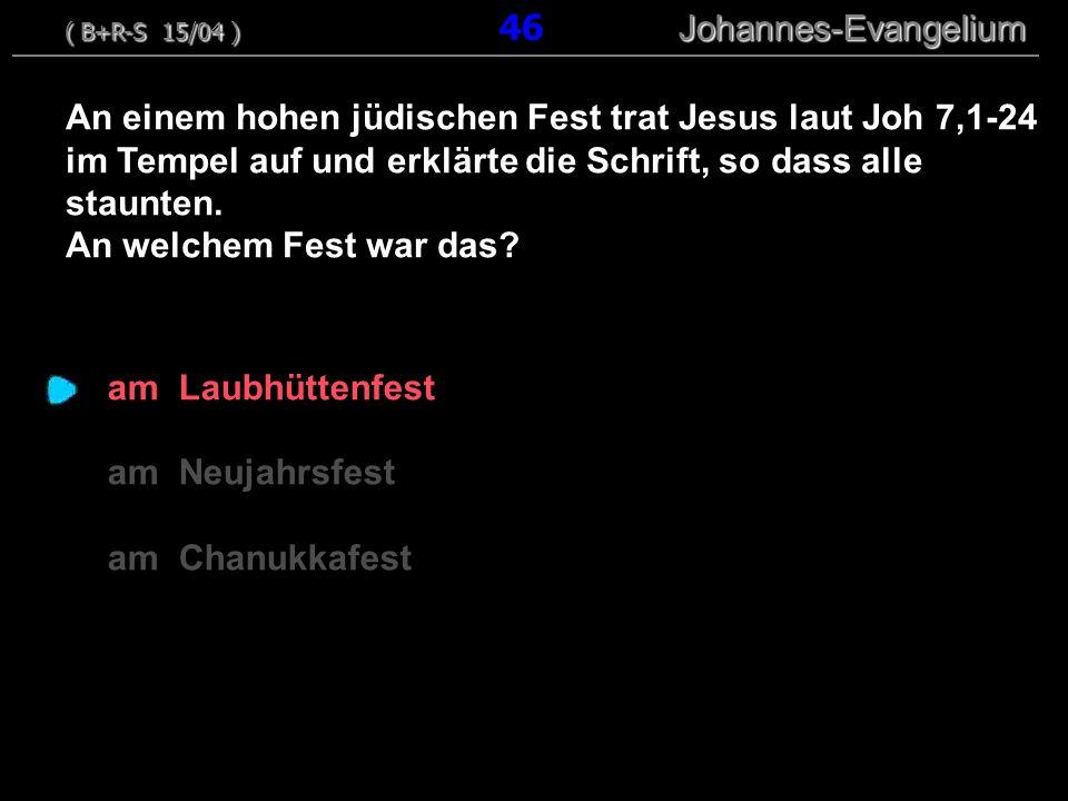( B+R-S 15/04 ) 46 Johannes-Evangelium