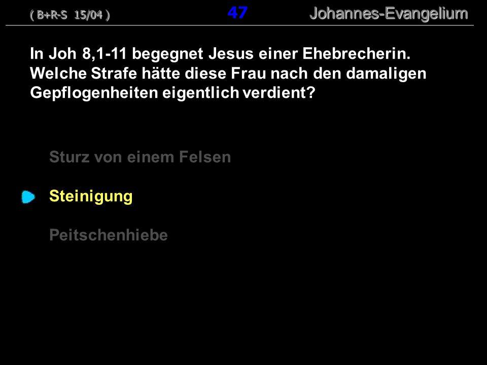 ( B+R-S 15/04 ) 47 Johannes-Evangelium