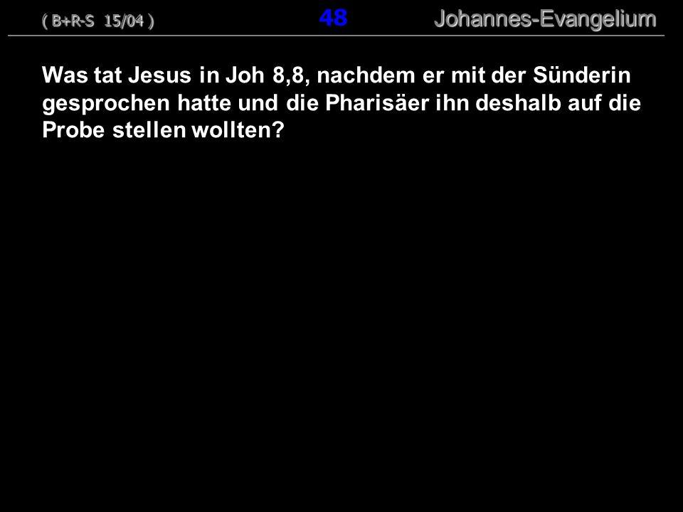 ( B+R-S 15/04 ) 48 Johannes-Evangelium