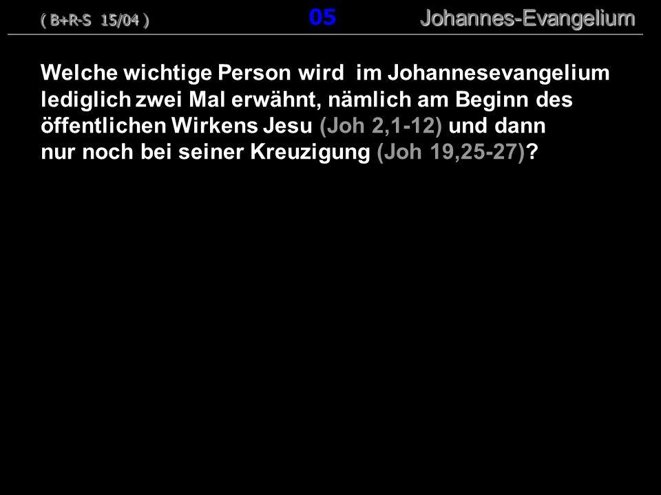 ( B+R-S 15/04 ) 05 Johannes-Evangelium