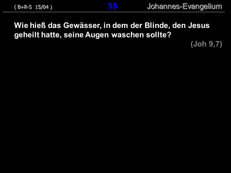 ( B+R-S 15/04 ) 55 Johannes-Evangelium