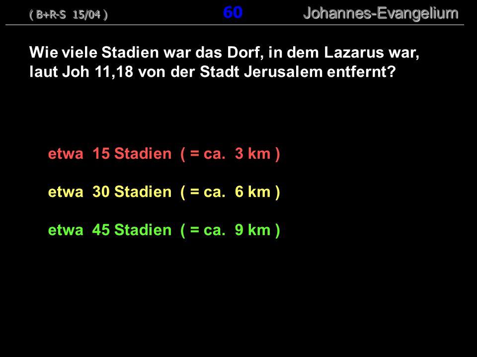 ( B+R-S 15/04 ) 60 Johannes-Evangelium