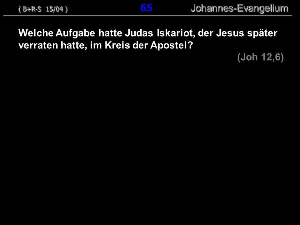 ( B+R-S 15/04 ) 65 Johannes-Evangelium