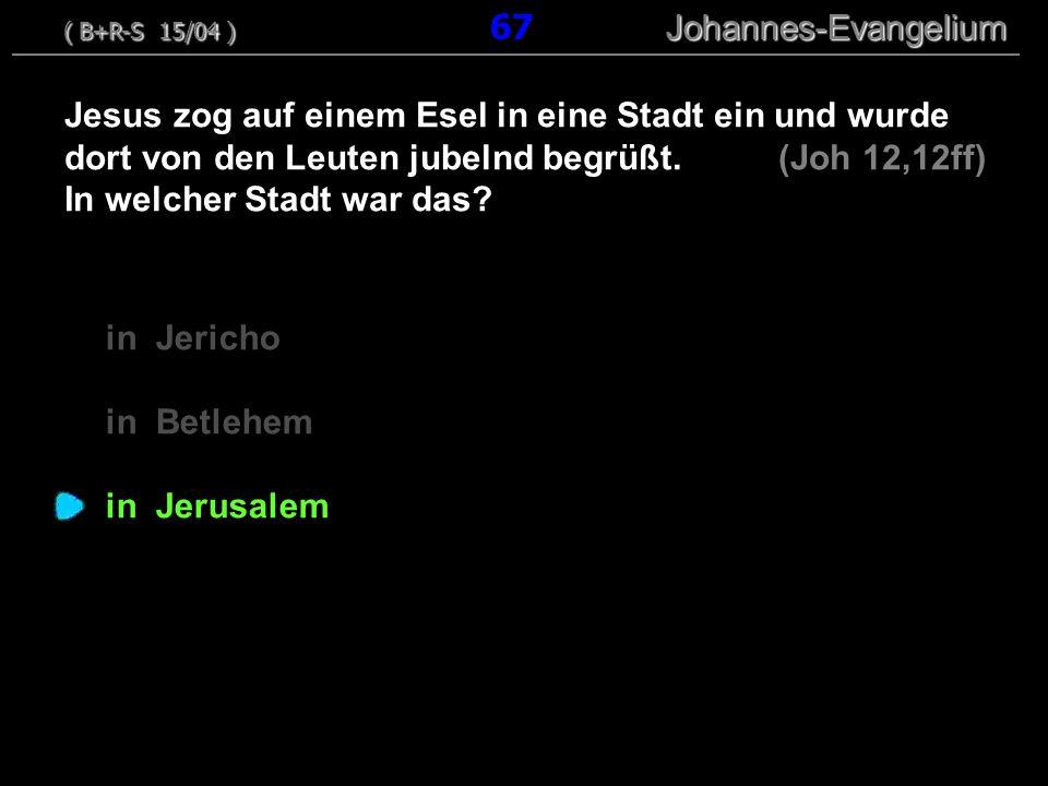 ( B+R-S 15/04 ) 67 Johannes-Evangelium