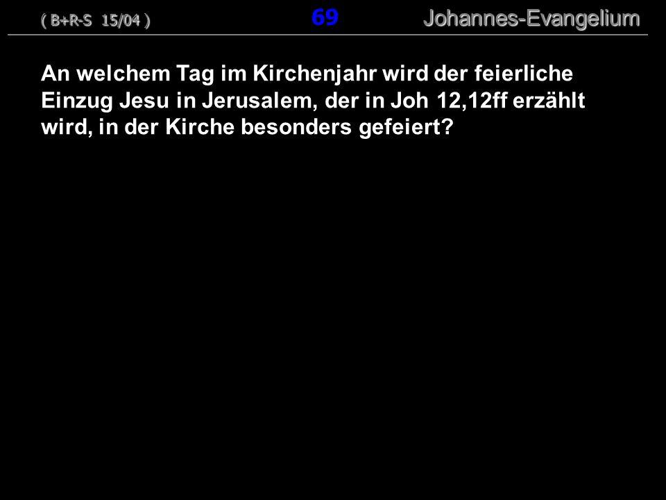 ( B+R-S 15/04 ) 69 Johannes-Evangelium