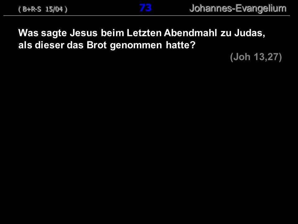 ( B+R-S 15/04 ) 73 Johannes-Evangelium