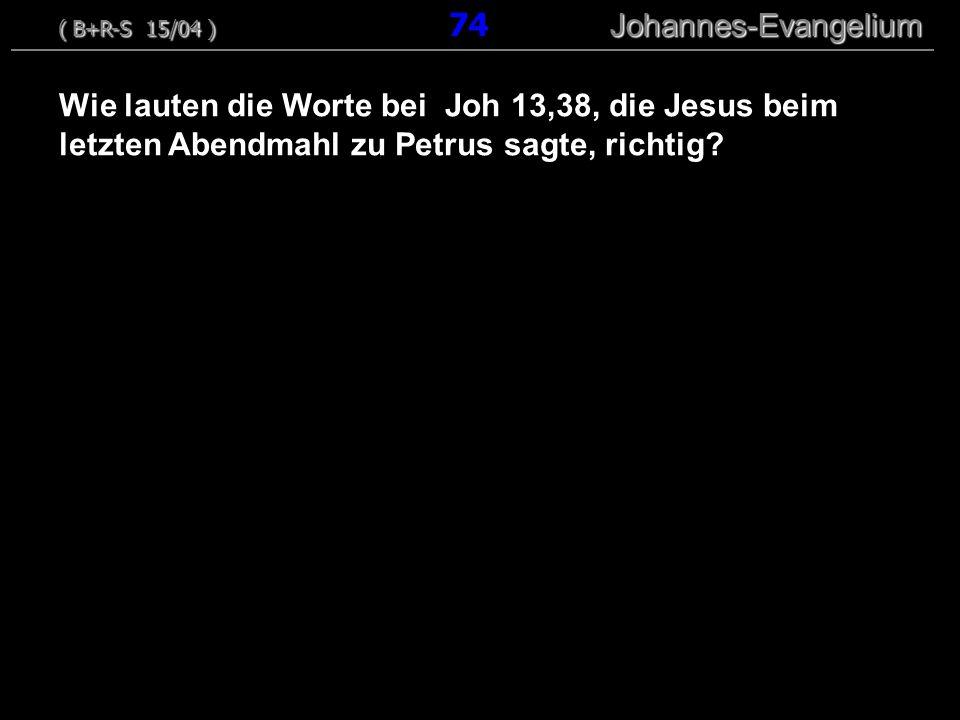 ( B+R-S 15/04 ) 74 Johannes-Evangelium