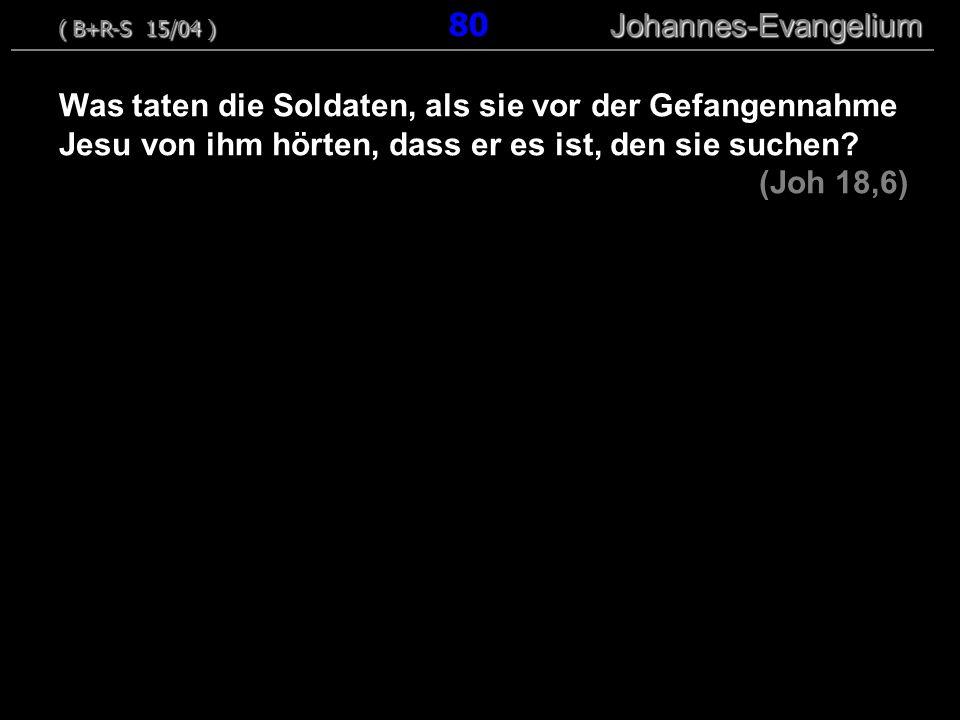 ( B+R-S 15/04 ) 80 Johannes-Evangelium