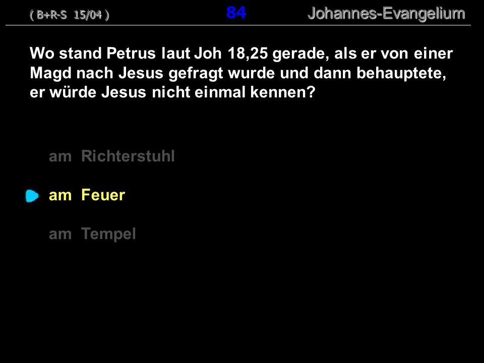 ( B+R-S 15/04 ) 84 Johannes-Evangelium