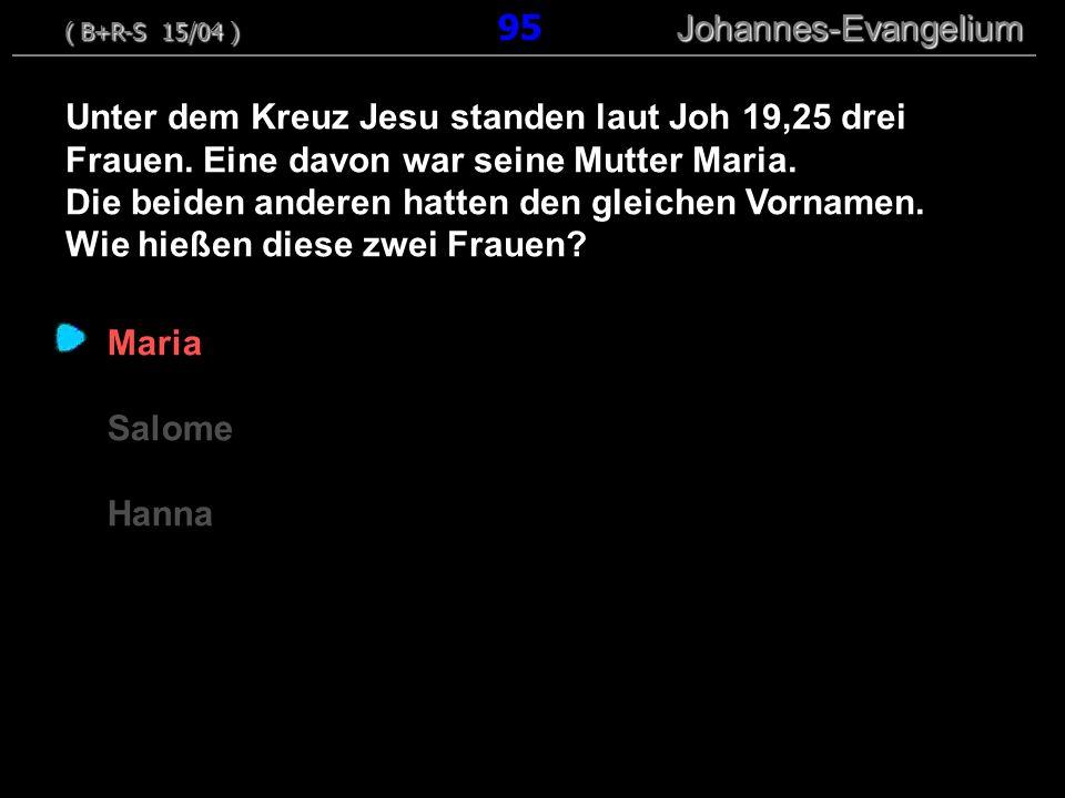 ( B+R-S 15/04 ) 95 Johannes-Evangelium