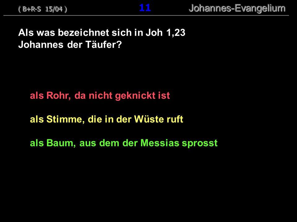Als was bezeichnet sich in Joh 1,23 Johannes der Täufer